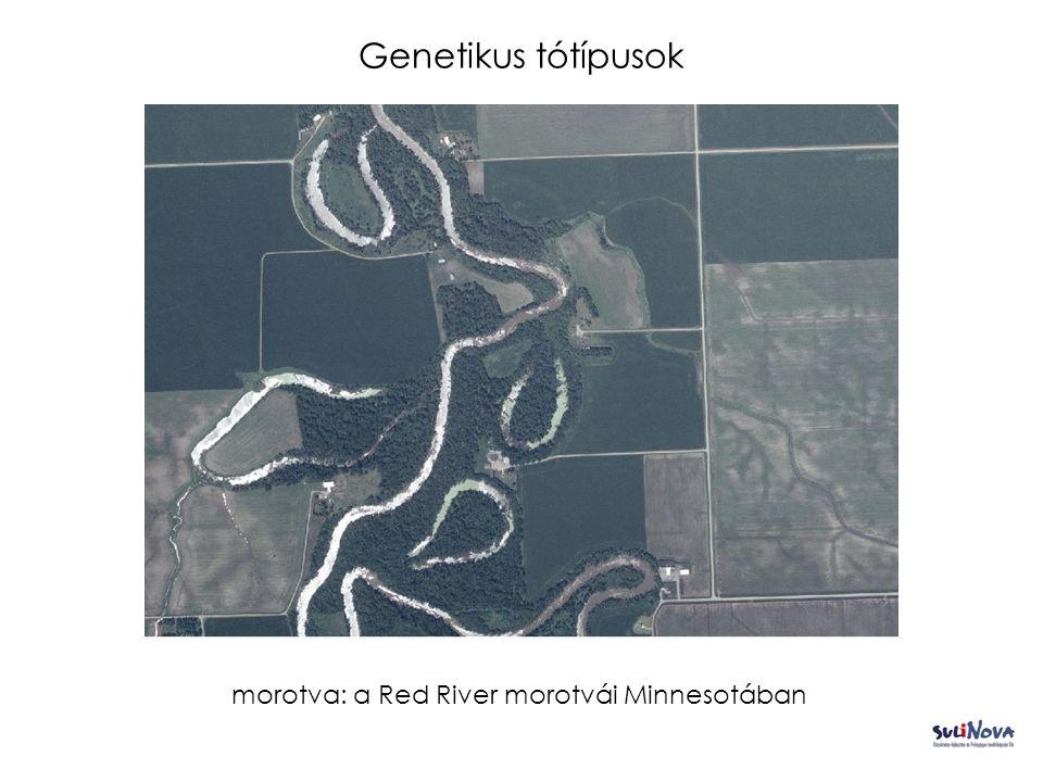 Genetikus tótípusok morotva: a Red River morotvái Minnesotában