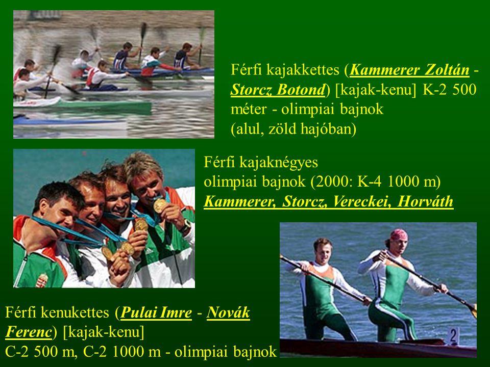Férfi kajakkettes (Kammerer Zoltán - Storcz Botond) [kajak-kenu] K-2 500 méter - olimpiai bajnok (alul, zöld hajóban) Férfi kajaknégyes olimpiai bajno
