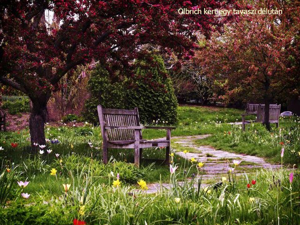 Olbrich kert a Wisconsin-i Madisonban