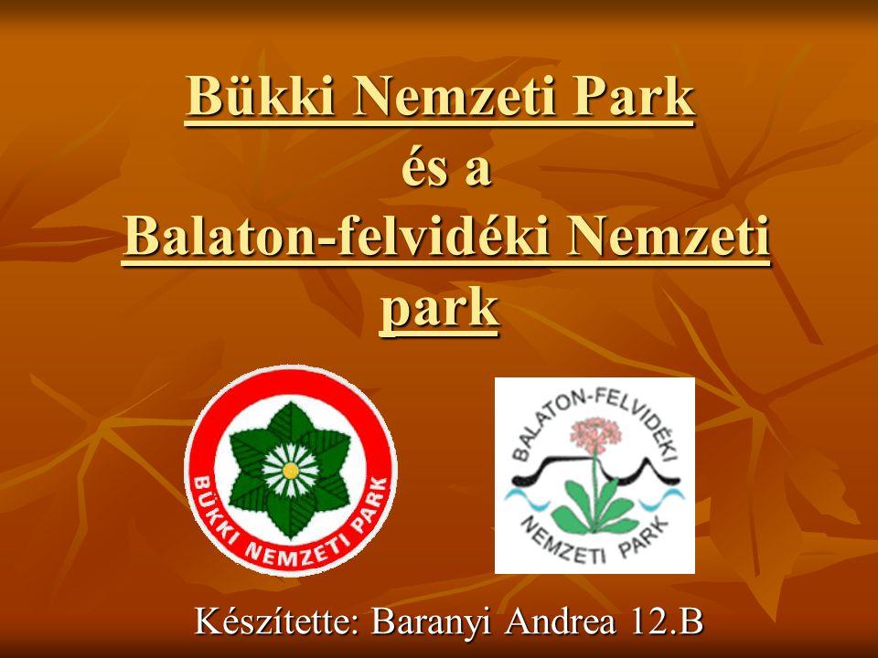 Bükki Nemzeti Park és a Balaton-felvidéki Nemzeti park Készítette: Baranyi Andrea 12.B