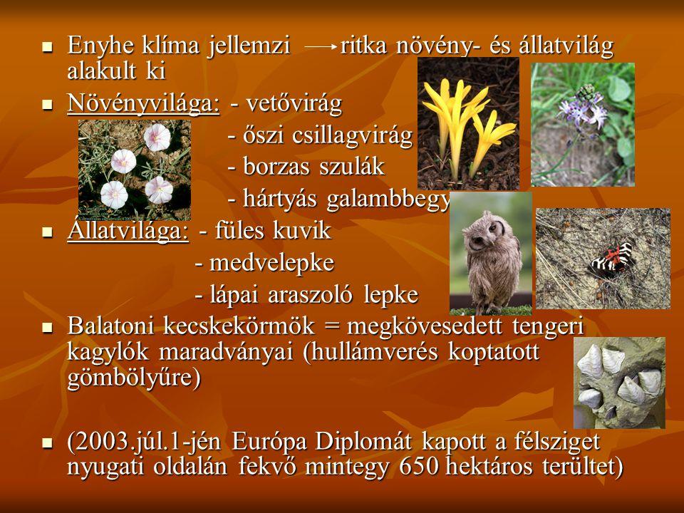  Enyhe klíma jellemzi ritka növény- és állatvilág alakult ki  Növényvilága: - vetővirág - őszi csillagvirág - őszi csillagvirág - borzas szulák - bo