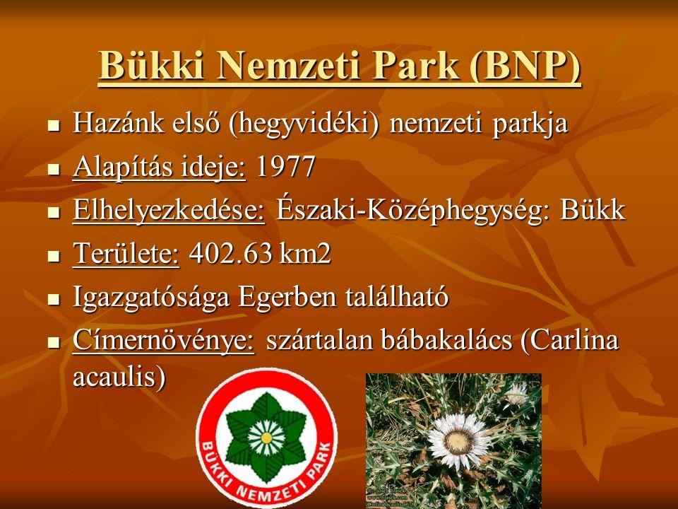 Bükki Nemzeti Park (BNP)  Hazánk első (hegyvidéki) nemzeti parkja  Alapítás ideje: 1977  Elhelyezkedése: Északi-Középhegység: Bükk  Területe: 402.