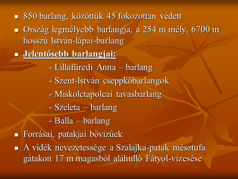  850 barlang, közöttük 45 fokozottan védett  Ország legmélyebb barlangja, a 254 m mély, 6700 m hosszú István-lápai-barlang  Jelentősebb barlangjai: