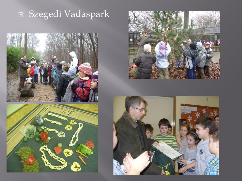  Szegedi Vadaspark