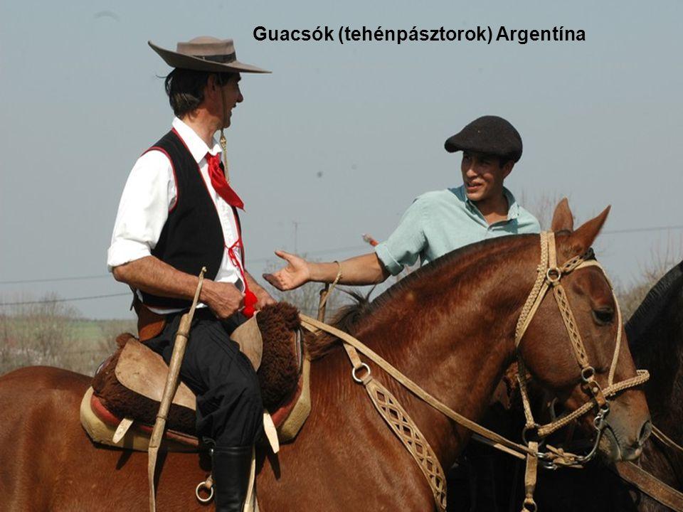 Argentína a pampák (füves pusztaság) és a guacsók hazája is