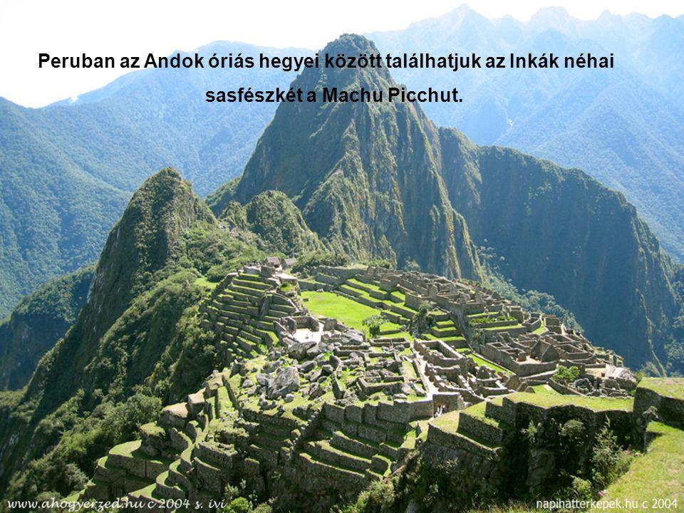 Az Andok hatalmas hegyeinek őrzője, az Indiánok szent madara A Kondor keselyű