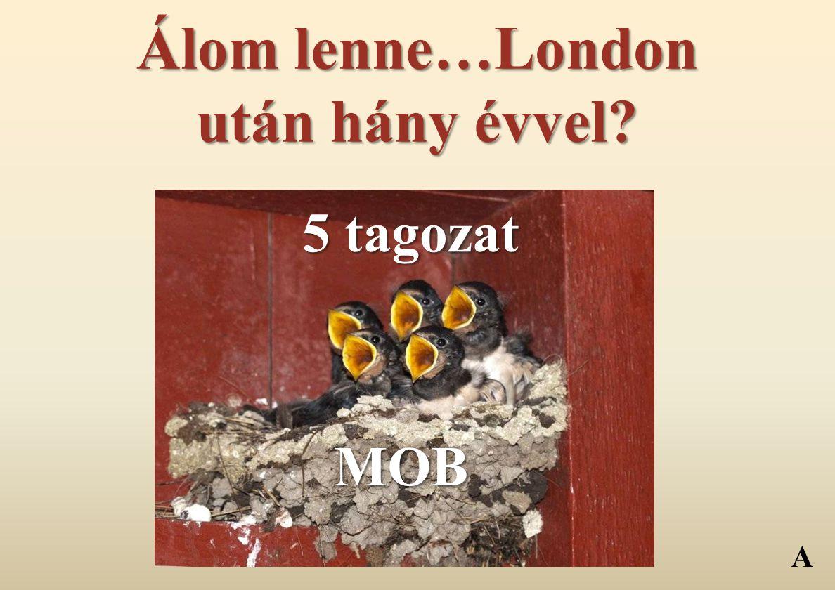 Álom lenne…London után hány évvel? MOB 5 tagozat A