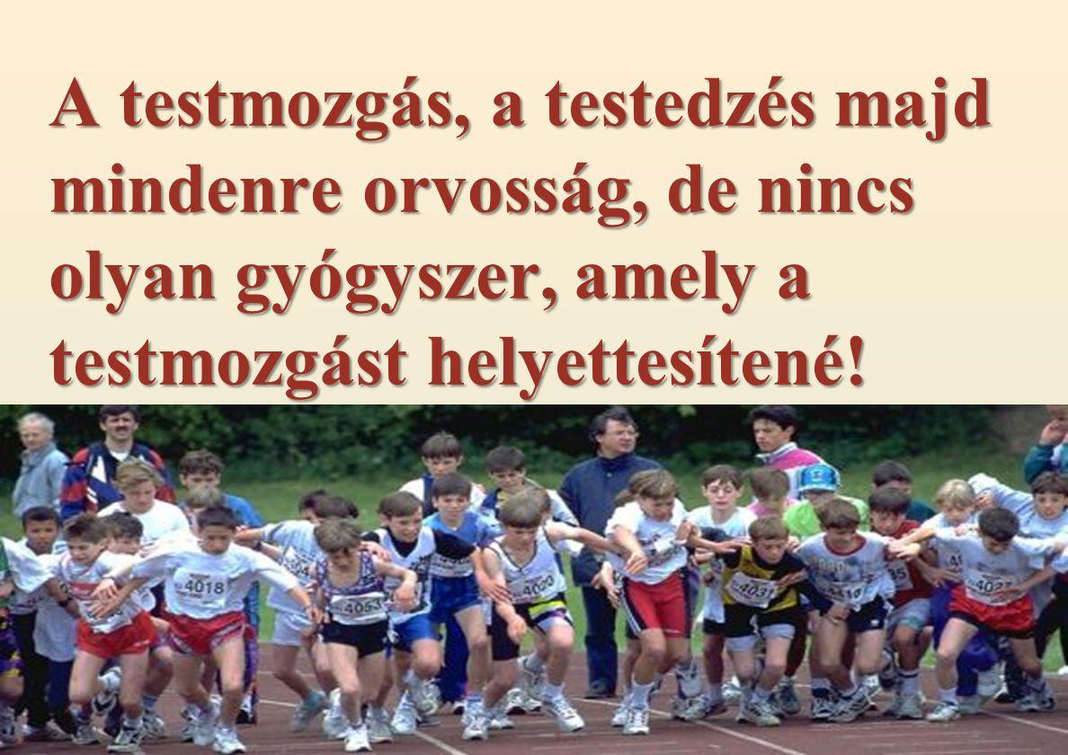 A testmozgás, a testedzés majd mindenre orvosság, de nincs olyan gyógyszer, amely a testmozgást helyettesítené!