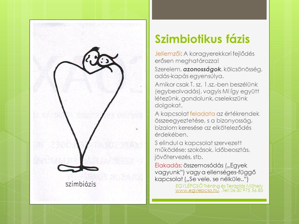 Szimbiotikus fázis - Jellemzői: A koragyerekkori fejlődés erősen meghatározza! - Szerelem, azonosságok, kölcsönösség, adás-kapás egyensúlya. - Amikor
