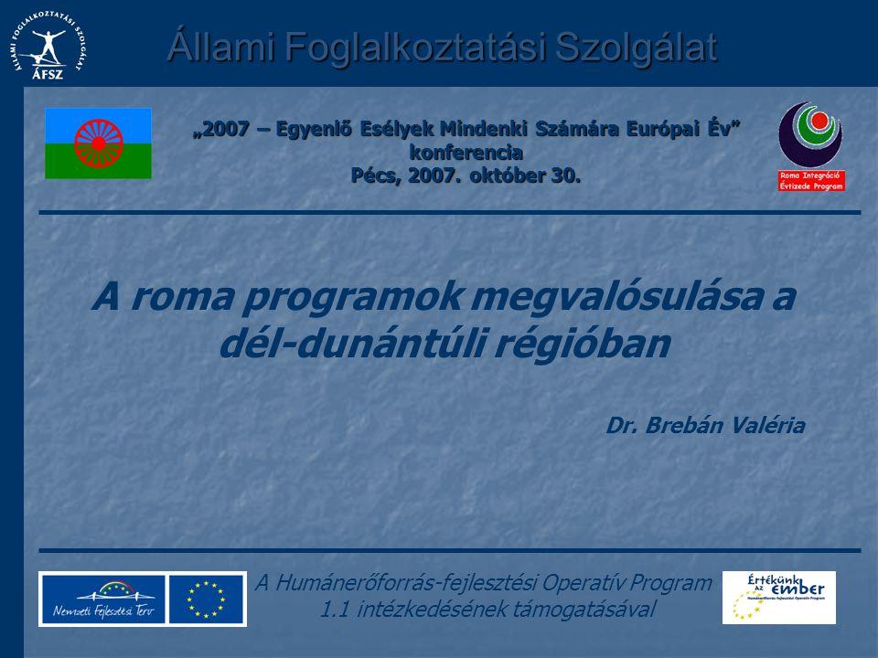 Állami Foglalkoztatási Szolgálat A Humánerőforrás-fejlesztési Operatív Program 1.1 intézkedésének támogatásával A roma programok megvalósulása a dél-d