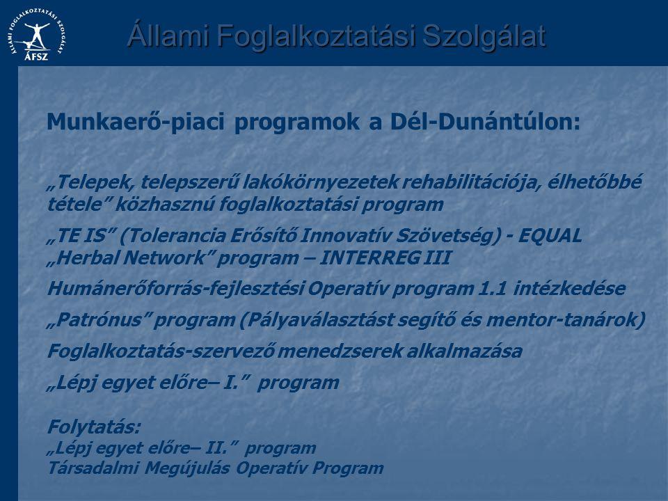 """Munkaerő-piaci programok a Dél-Dunántúlon: """"Telepek, telepszerű lakókörnyezetek rehabilitációja, élhetőbbé tétele"""" közhasznú foglalkoztatási program """""""