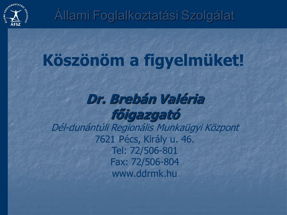 Köszönöm a figyelmüket! Dr. Brebán Valéria főigazgató Dél-dunántúli Regionális Munkaügyi Központ 7621 Pécs, Király u. 46. Tel: 72/506-801 Fax: 72/506-