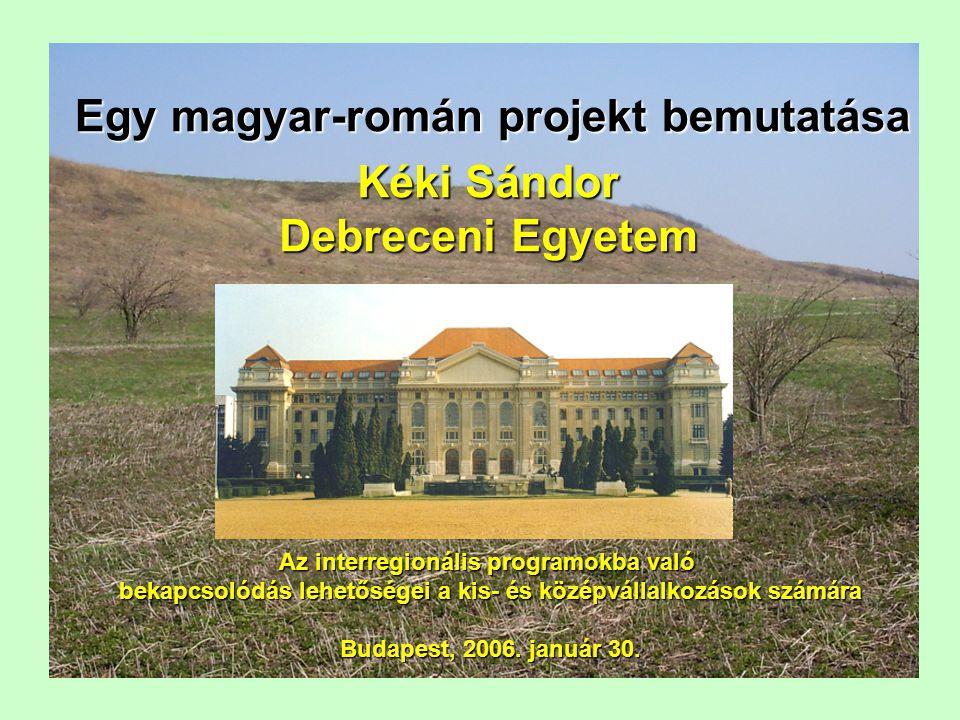 Vázlat a Debreceni Egyetem és a Vasile Goldis Egyetem (Szatmárnémeti) a Debreceni Egyetem és a Vasile Goldis Egyetem (Szatmárnémeti) kapcsolatának bemutatása, a projekt előzményei kapcsolatának bemutatása, a projekt előzményei a projekt bemutatása a projekt bemutatása a különböző vállalkozások projektbe történő bekapcsolódásának a különböző vállalkozások projektbe történő bekapcsolódásának lehetőségei lehetőségei