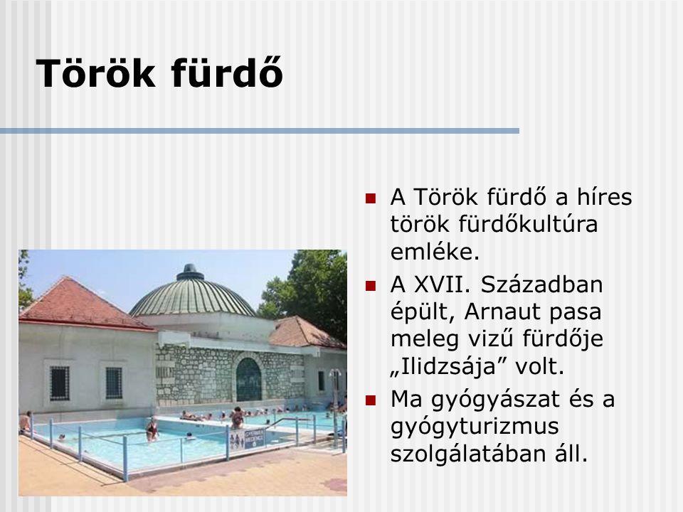 """Török fürdő  A Török fürdő a híres török fürdőkultúra emléke.  A XVII. Században épült, Arnaut pasa meleg vizű fürdője """"Ilidzsája"""" volt.  Ma gyógyá"""