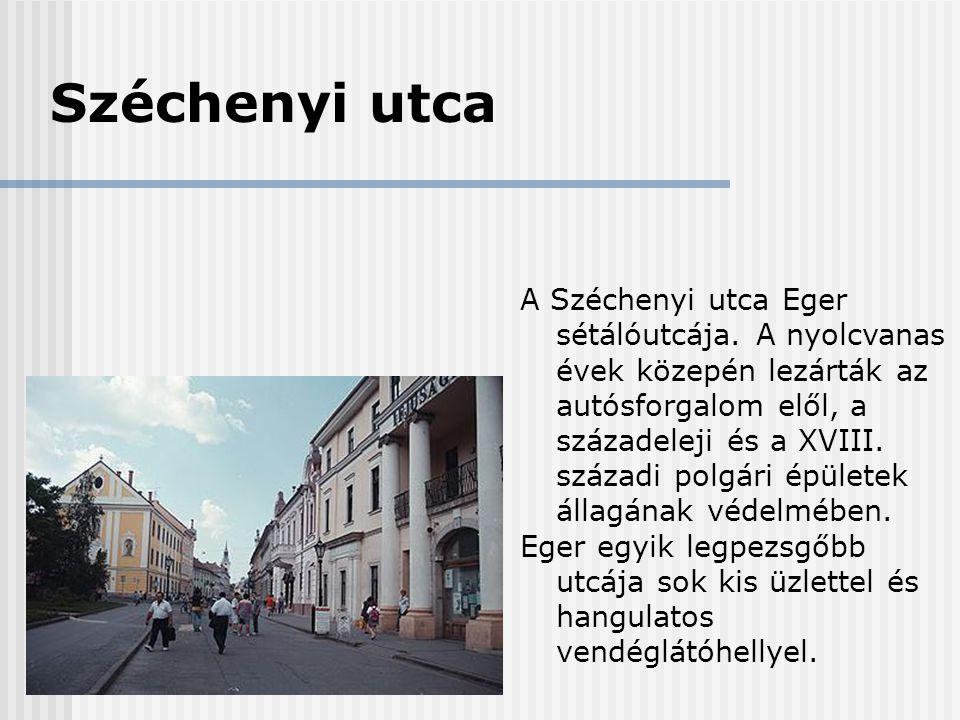 Széchenyi utca A Széchenyi utca Eger sétálóutcája. A nyolcvanas évek közepén lezárták az autósforgalom elől, a századeleji és a XVIII. századi polgári