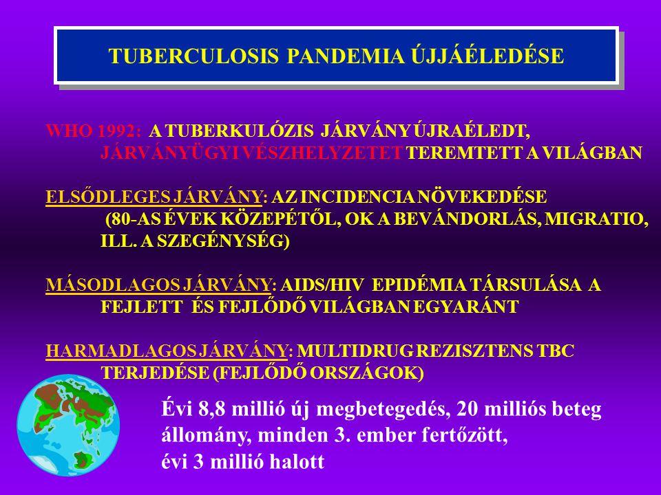 TUBERCULOSIS PANDEMIA ÚJJÁÉLEDÉSE Évi 8,8 millió új megbetegedés, 20 milliós beteg állomány, minden 3. ember fertőzött, évi 3 millió halott WHO 1992: