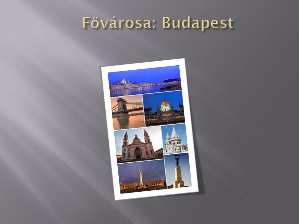  Nemzetközileg a gulyás, a pörkölt, a paprikás krumpli és a lecsó a legismertebb magyar étel.