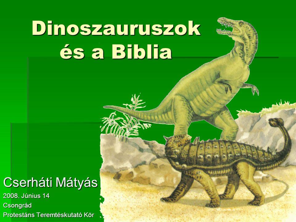 Dinoszauruszok és a Biblia Cserháti Mátyás 2008. Június 14 Csongrád Protestáns Teremtéskutató Kör