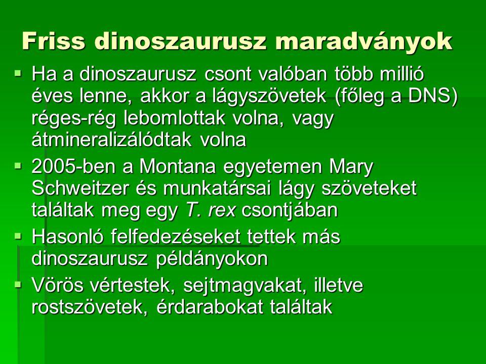 Friss dinoszaurusz maradványok  Ha a dinoszaurusz csont valóban több millió éves lenne, akkor a lágyszövetek (főleg a DNS) réges-rég lebomlottak volna, vagy átmineralizálódtak volna  2005-ben a Montana egyetemen Mary Schweitzer és munkatársai lágy szöveteket találtak meg egy T.
