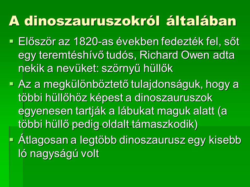 A dinoszauruszokról általában  Először az 1820-as években fedezték fel, sőt egy teremtéshívő tudós, Richard Owen adta nekik a nevüket: szörnyű hüllők