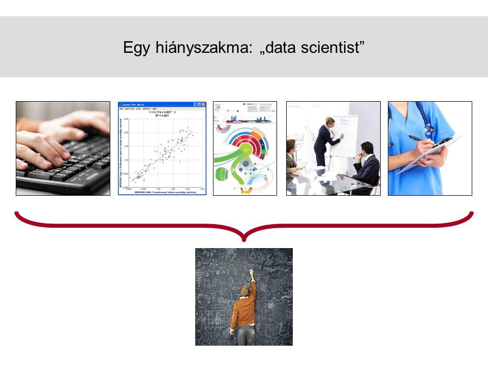 """Egy hiányszakma: """"data scientist"""