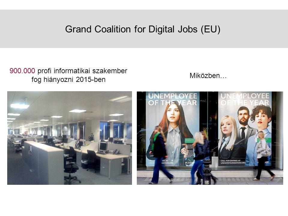 Grand Coalition for Digital Jobs (EU) 900.000 profi informatikai szakember fog hiányozni 2015-ben Miközben…