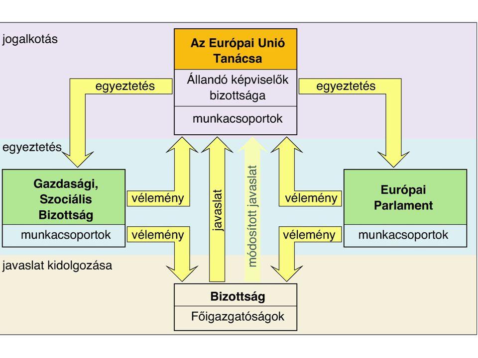 Európai Bizottság – Europen Commission A szerv egyszerre tölt be javaslattevő (döntéselőkészítő, jogszabály-kezdeményező), végrehajtó, döntéshozó, ellenőrző és képviseleti funkciókat.