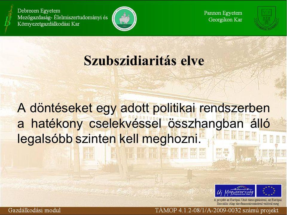 Szubszidiaritás elve A döntéseket egy adott politikai rendszerben a hatékony cselekvéssel összhangban álló legalsóbb szinten kell meghozni.