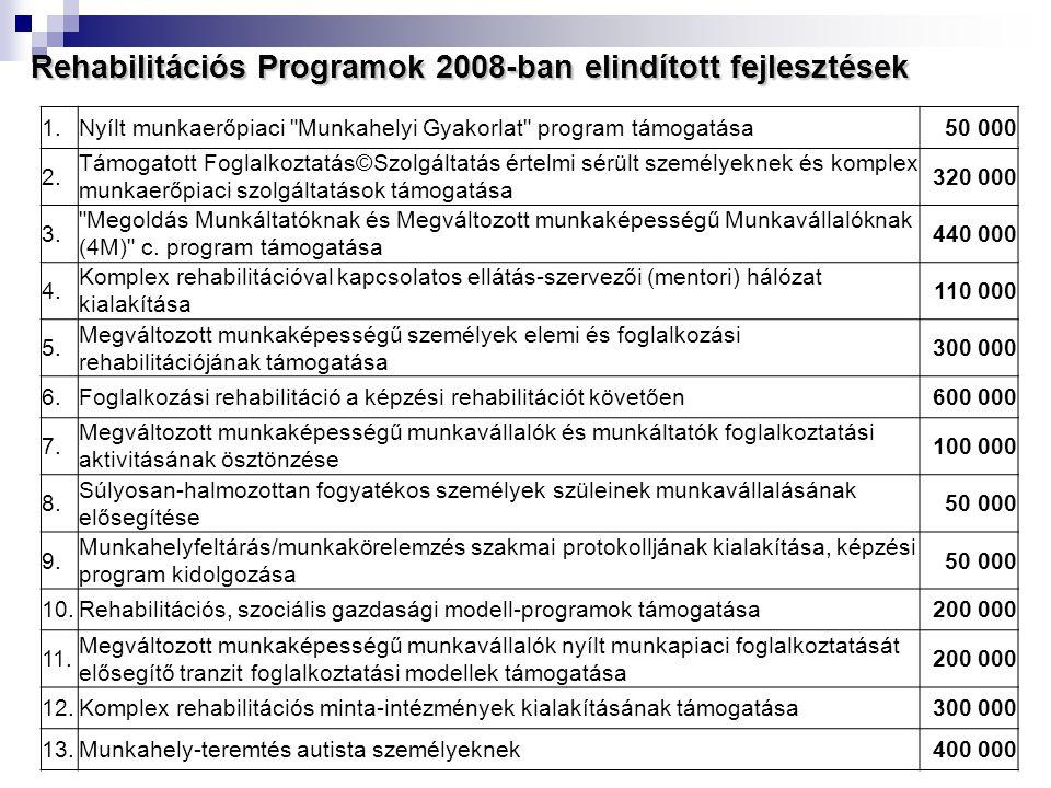 Rehabilitációs Programok 2008-ban elindított fejlesztések 1.Nyílt munkaerőpiaci