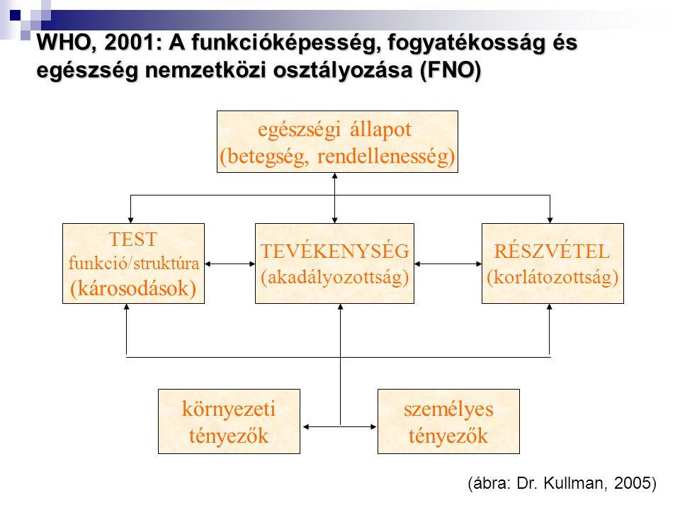 WHO, 2001: A funkcióképesség, fogyatékosság és egészség nemzetközi osztályozása (FNO) TEST funkció/struktúra (károsodások) TEVÉKENYSÉG (akadályozottsá