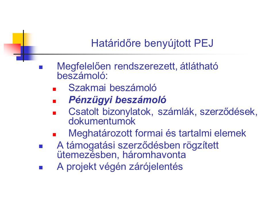Határidőre benyújtott PEJ  Megfelelően rendszerezett, átlátható beszámoló:  Szakmai beszámoló  Pénzügyi beszámoló  Csatolt bizonylatok, számlák, s