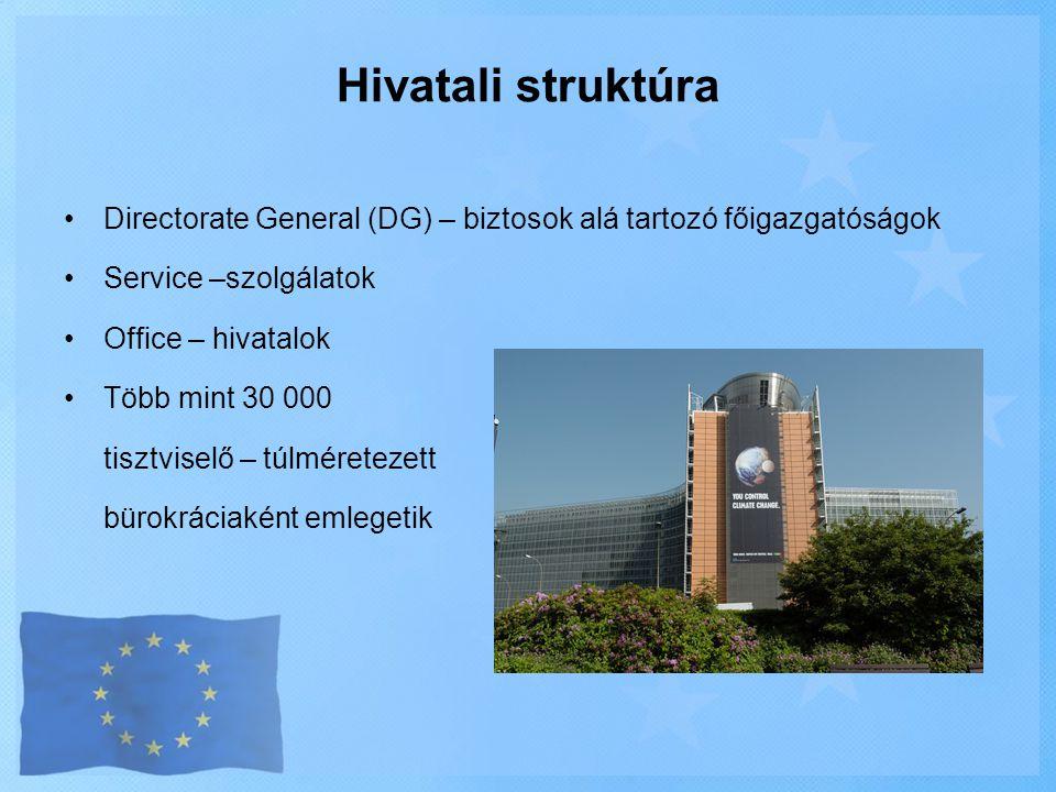 •Directorate General (DG) – biztosok alá tartozó főigazgatóságok •Service –szolgálatok •Office – hivatalok •Több mint 30 000 tisztviselő – túlméreteze
