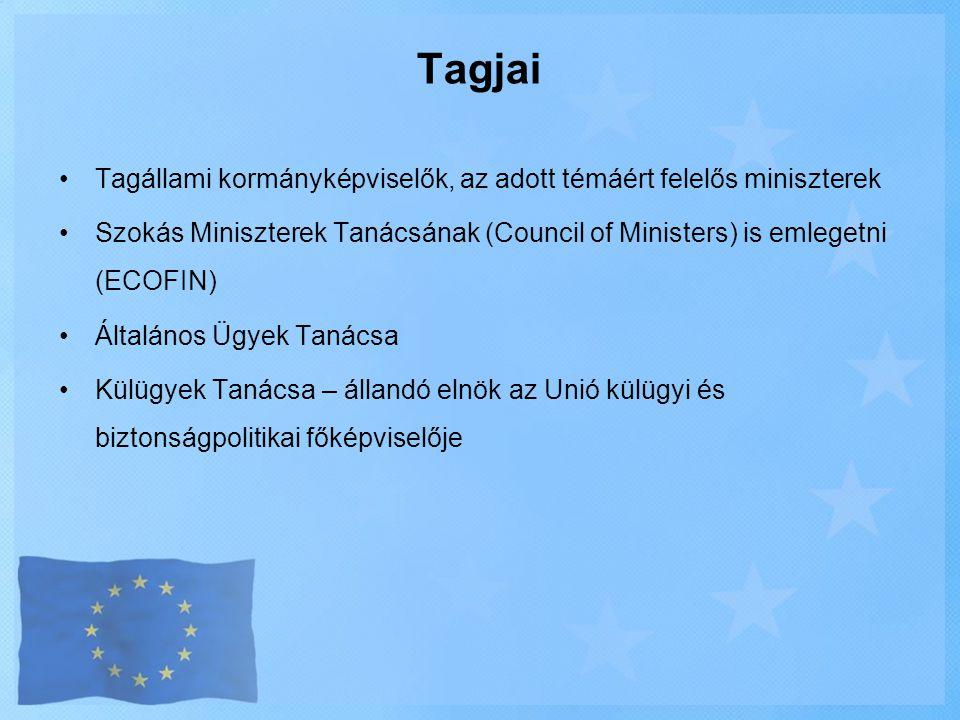 •Tagállami kormányképviselők, az adott témáért felelős miniszterek •Szokás Miniszterek Tanácsának (Council of Ministers) is emlegetni (ECOFIN) •Általá