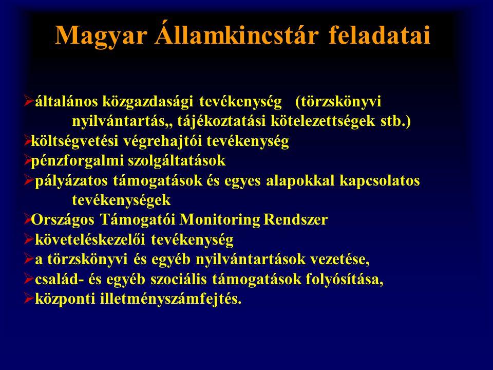 Magyar Államkincstár feladatai  általános közgazdasági tevékenység (törzskönyvi nyilvántartás,, tájékoztatási kötelezettségek stb.)  költségvetési v