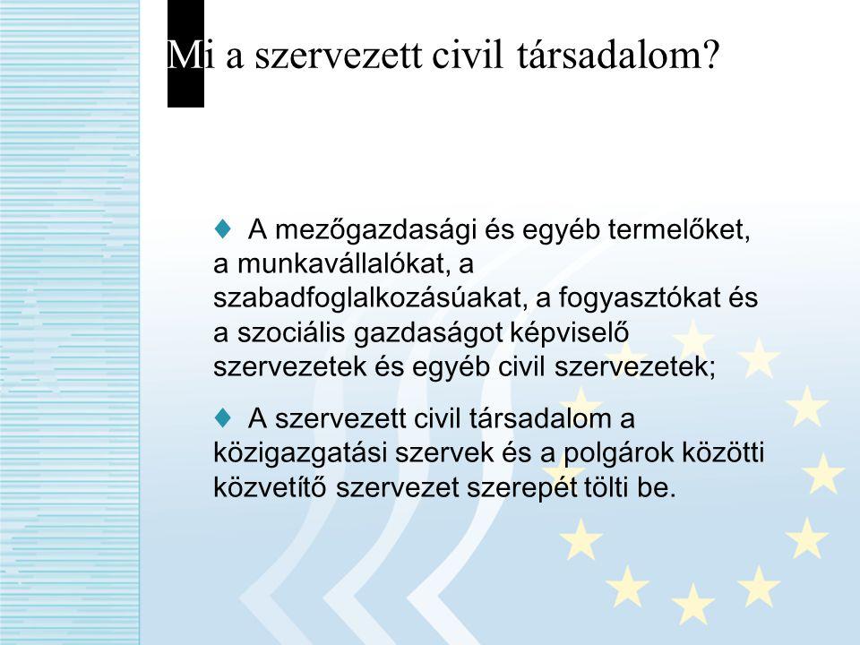 Mi a szervezett civil társadalom? ♦ A mezőgazdasági és egyéb termelőket, a munkavállalókat, a szabadfoglalkozásúakat, a fogyasztókat és a szociális ga
