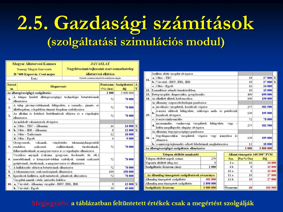 2.5. Gazdasági számítások Megjegyzés: a táblázatban feltüntetett értékek csak a megértést szolgálják (szolgáltatási szimulációs modul)