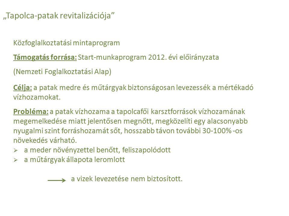 """""""Tapolca-patak revitalizációja"""" Közfoglalkoztatási mintaprogram Támogatás forrása: Start-munkaprogram 2012. évi előirányzata (Nemzeti Foglalkoztatási"""