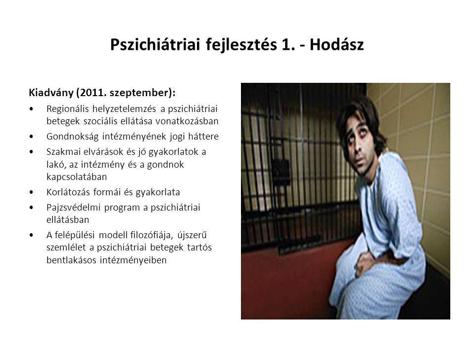 Pszichiátriai fejlesztés 1. - Hodász Kiadvány (2011. szeptember): •Regionális helyzetelemzés a pszichiátriai betegek szociális ellátása vonatkozásban