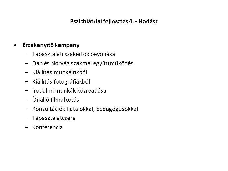 Pszichiátriai fejlesztés 4. - Hodász •Érzékenyítő kampány –Tapasztalati szakértők bevonása –Dán és Norvég szakmai együttműködés –Kiállítás munkáinkból