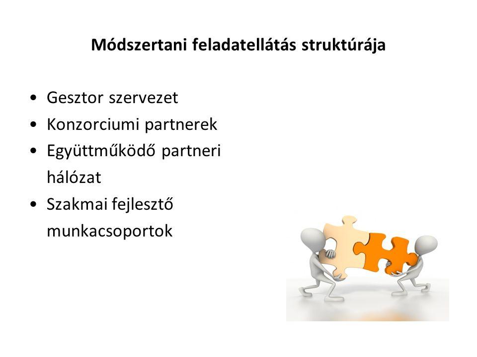 Módszertani feladatellátás struktúrája •Gesztor szervezet •Konzorciumi partnerek •Együttműködő partneri hálózat •Szakmai fejlesztő munkacsoportok