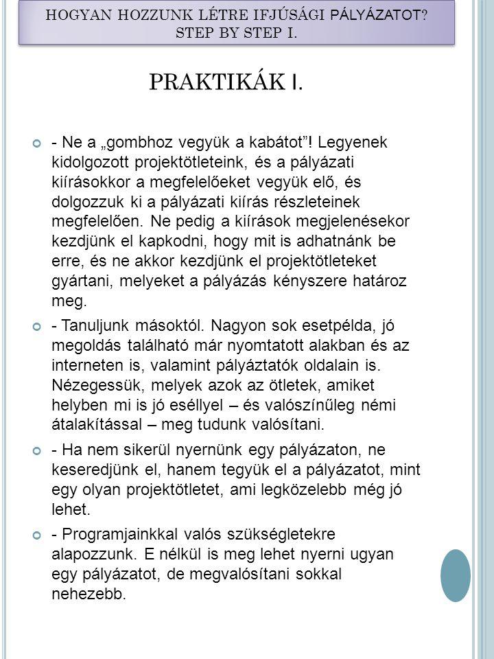 HOGYAN HOZZUNK LÉTRE IFJÚSÁGI PÁLYÁZATOT .STEP BY STEP I.