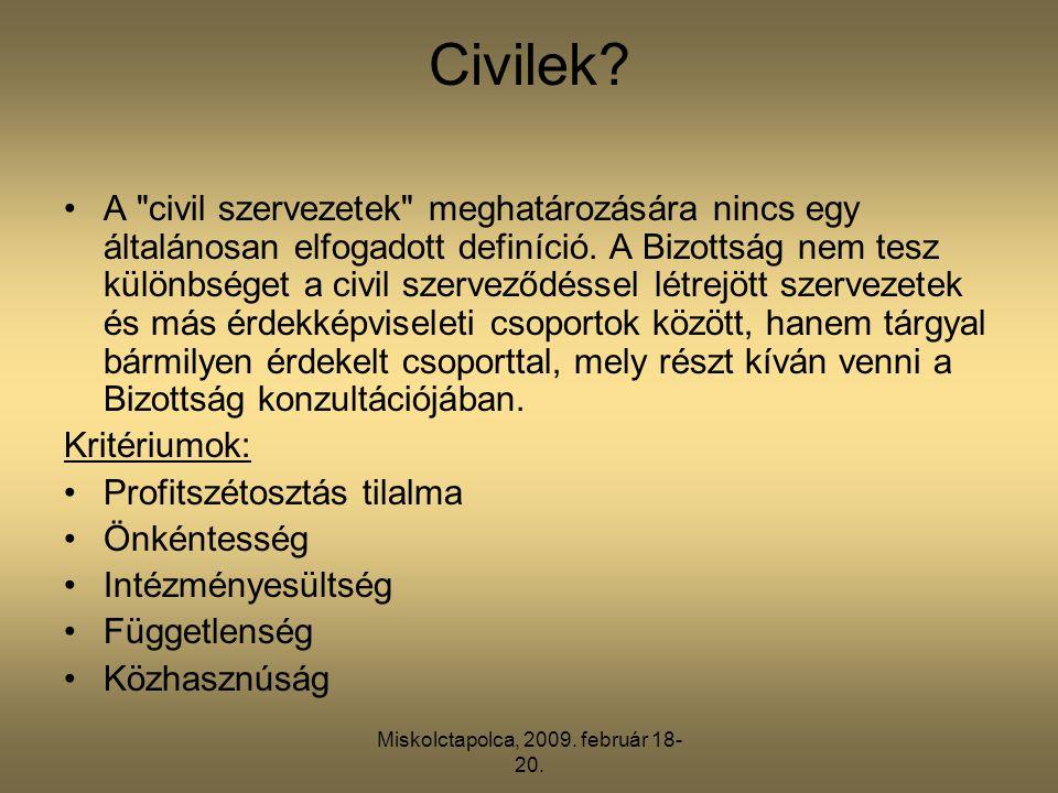 Miskolctapolca, 2009. február 18- 20. Civilek? •A