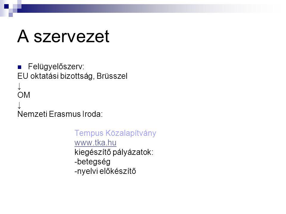 A szervezet  Felügyelőszerv: EU oktatási bizottság, Brüsszel ↓ OM ↓ Nemzeti Erasmus Iroda: Tempus Közalapítvány www.tka.hu kiegészítő pályázatok: -be