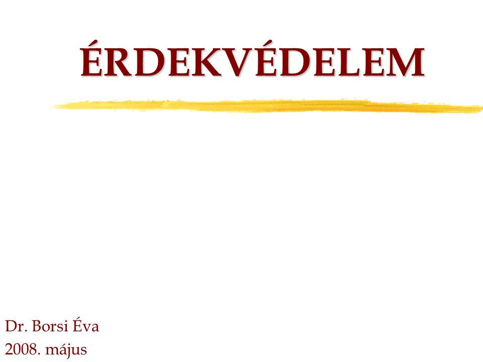 ÉRDEKVÉDELEM Dr. Borsi Éva 2008. május