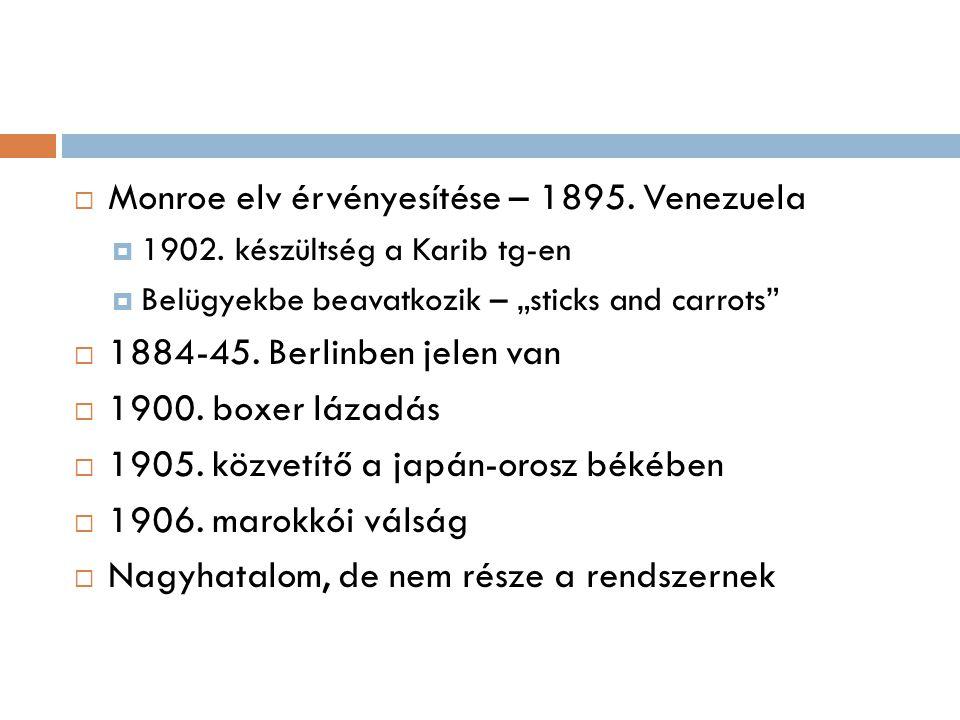 """ Monroe elv érvényesítése – 1895. Venezuela  1902. készültség a Karib tg-en  Belügyekbe beavatkozik – """"sticks and carrots""""  1884-45. Berlinben jel"""