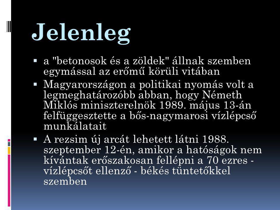 Jelenleg  a betonosok és a zöldek állnak szemben egymással az erőmű körüli vitában  Magyarországon a politikai nyomás volt a legmeghatározóbb abban, hogy Németh Miklós miniszterelnök 1989.