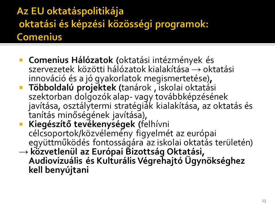 Comenius Hálózatok (oktatási intézmények és szervezetek közötti hálózatok kialakítása → oktatási innováció és a jó gyakorlatok megismertetése),  Tö