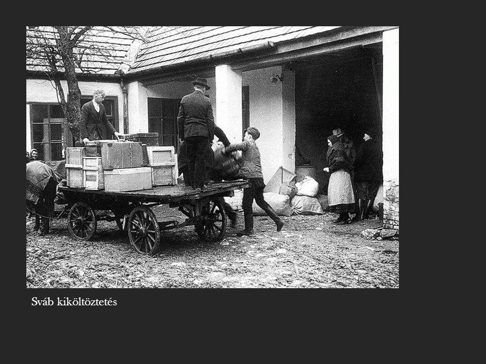 """- A Nemzeti Parasztpárt támogatta a kiköltöztetést ("""" Egy szál batyuval jöttek, egy szál batyuval menjenek. Kovács Imre) - Csehszlovák- magyar lakosságcsere-egyezmény; 100 ezer magyar települt haza, kb."""