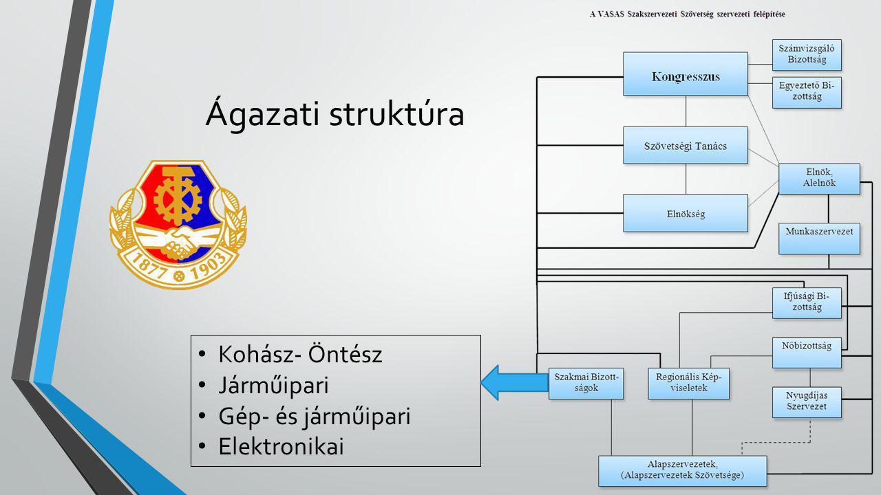 Ágazati struktúra • Kohász- Öntész • Járműipari • Gép- és járműipari • Elektronikai