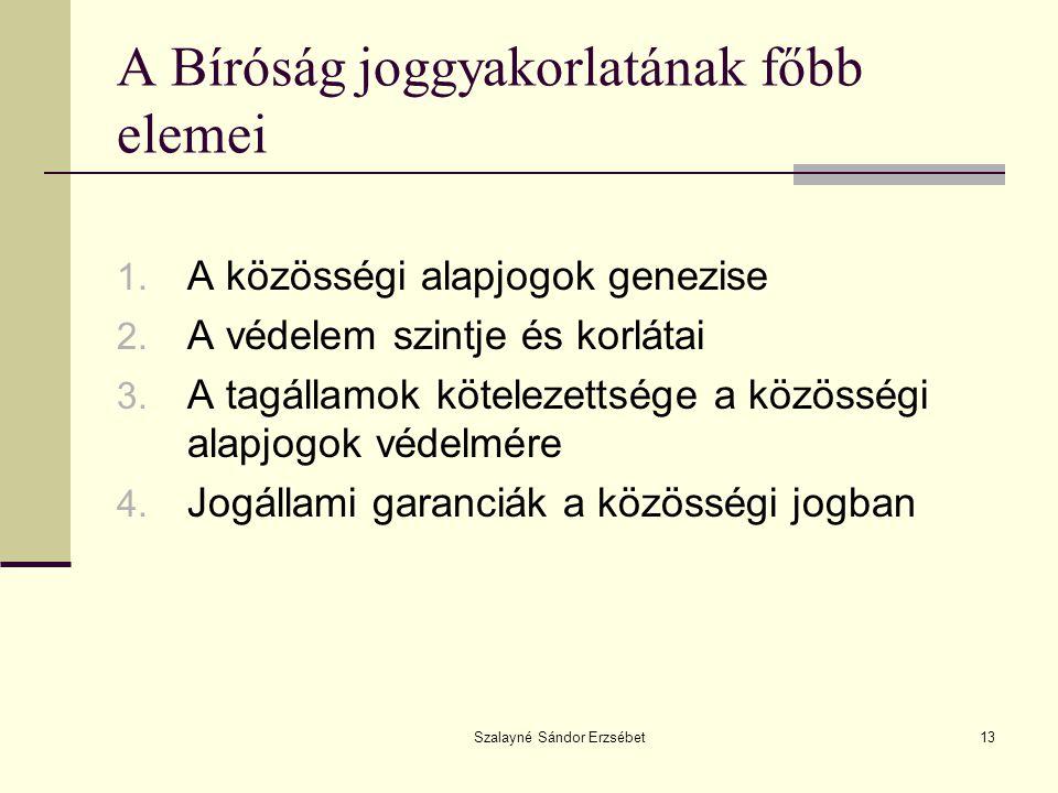 Szalayné Sándor Erzsébet13 A Bíróság joggyakorlatának főbb elemei 1.